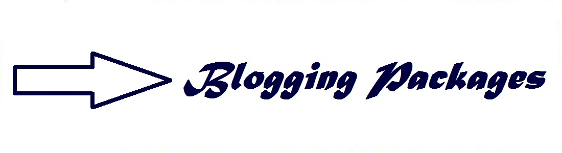 blogging success blogging to establish your online brand and web presence basic blogging package blogging plus package maharajaprofessionalz