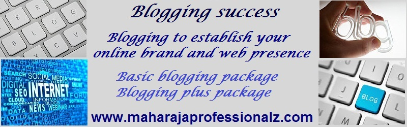 blogging success  blogging to establish your online brand and web presence basic blogging package blogging plus package  www.maharajaprofessionalz.com maharaja professionalz  dr maharaja sivasubramanian